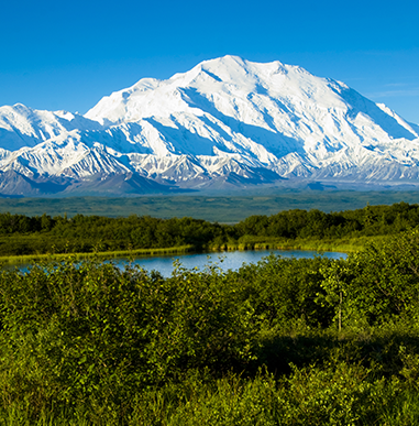 Featured Image Denali