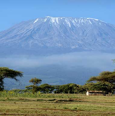 Climb Kilimanjaro with Alpine Ascents