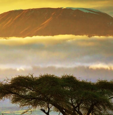 Climb Kilimanjaro with Alpine Ascents Mount Kilimanjaro Guides