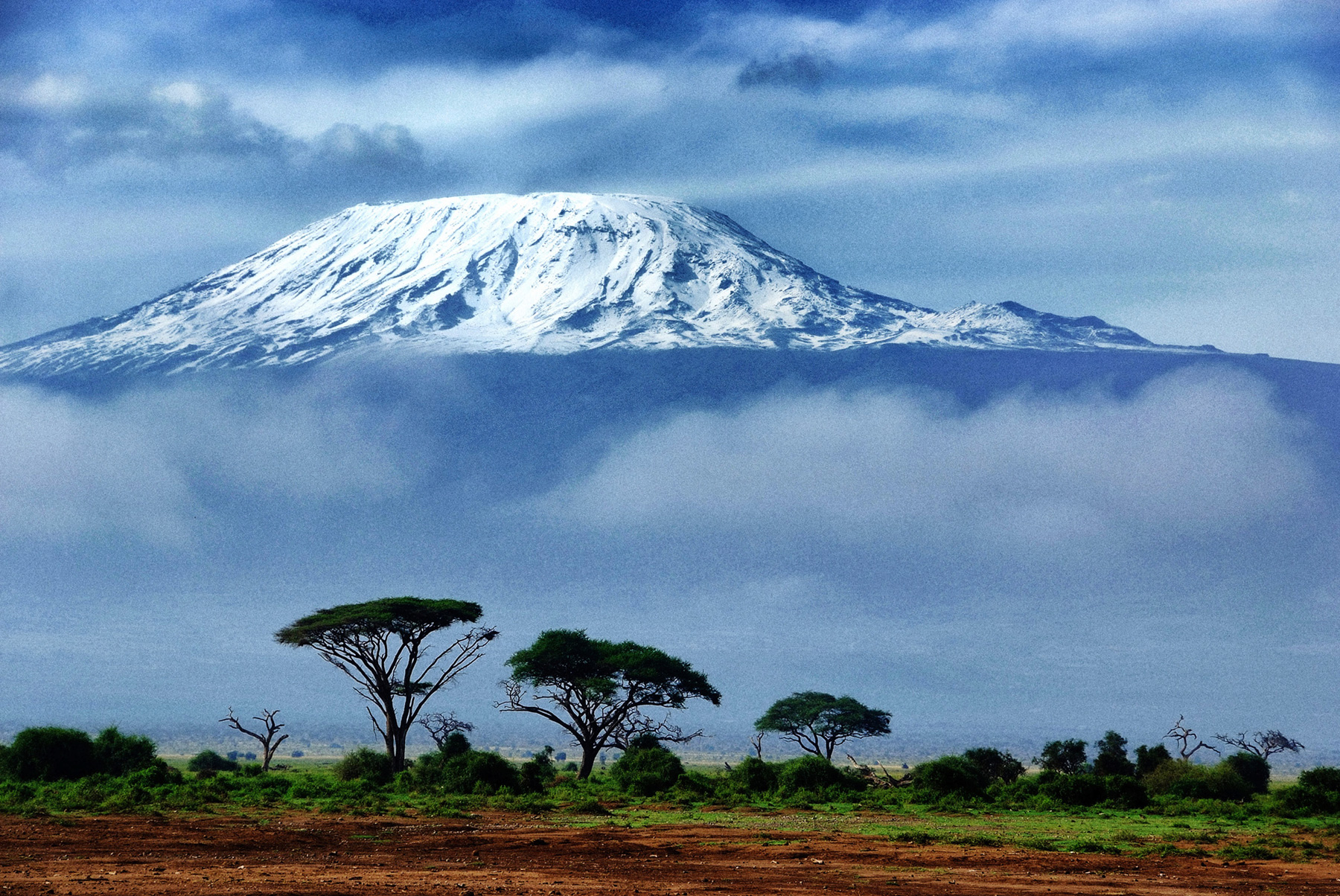 Best Kilimanjaro Guides and Porters