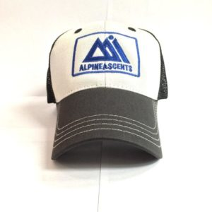 District trucker hat