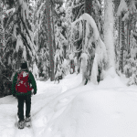 Selecting Snowshoes For Expeditions