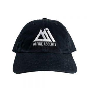 aai logo chino dad hat