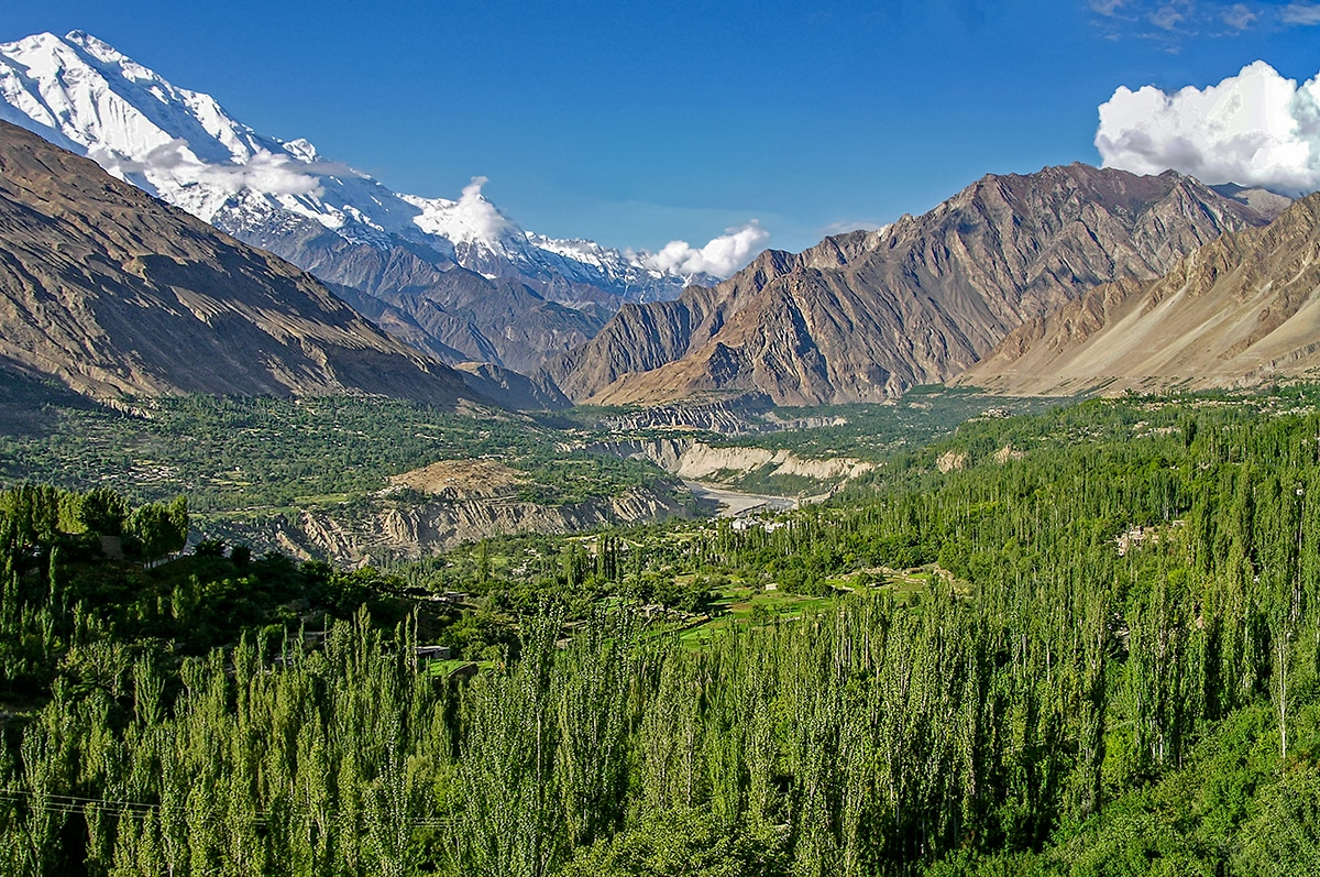 hunza valley forest